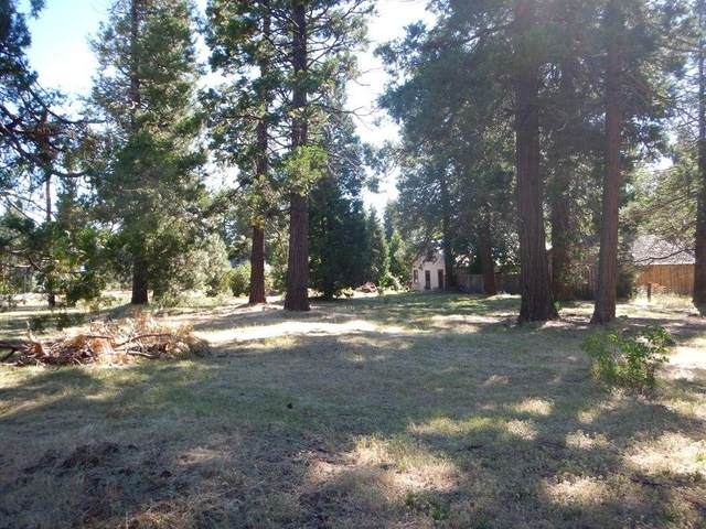 Hwy 299E, Burney, CA 96013 (#20-5195) :: Waterman Real Estate