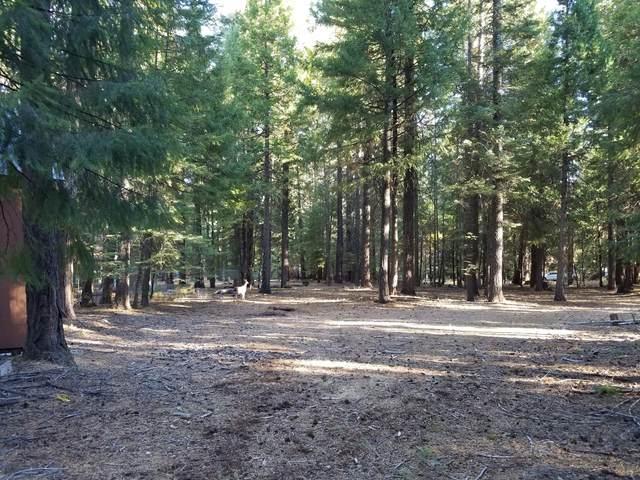Lot # 8 Redwood Drive, Shingletown, CA 96088 (#20-5253) :: Waterman Real Estate