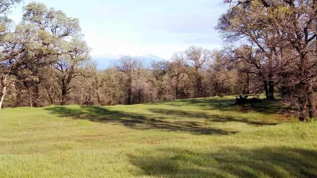 18875 Blythe Way, Cottonwood, CA 96022 (#20-5350) :: Vista Real Estate