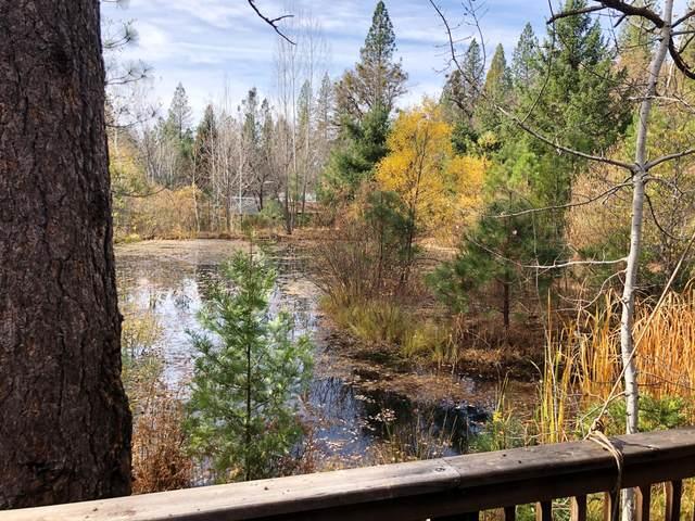 32850 Ponderosa Way, Paynes Creek, CA 96075 (#20-5571) :: Real Living Real Estate Professionals, Inc.