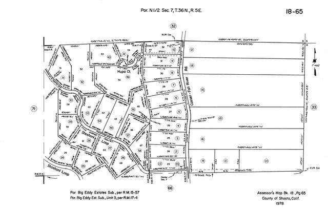000 Sanger Ln, Fall River Mills, CA 96028 (#20-5710) :: Real Living Real Estate Professionals, Inc.