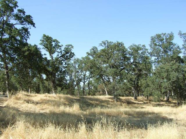 Oak Run Rd, Millville, CA 96062 (#20-5717) :: Waterman Real Estate
