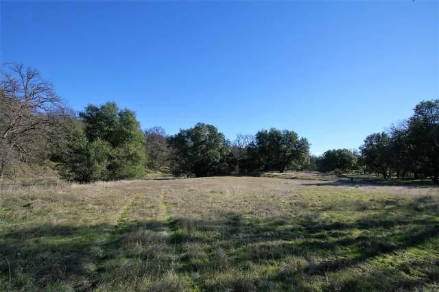6.3 acres Oak Bottom Road, Anderson, CA 96007 (#20-6014) :: Waterman Real Estate