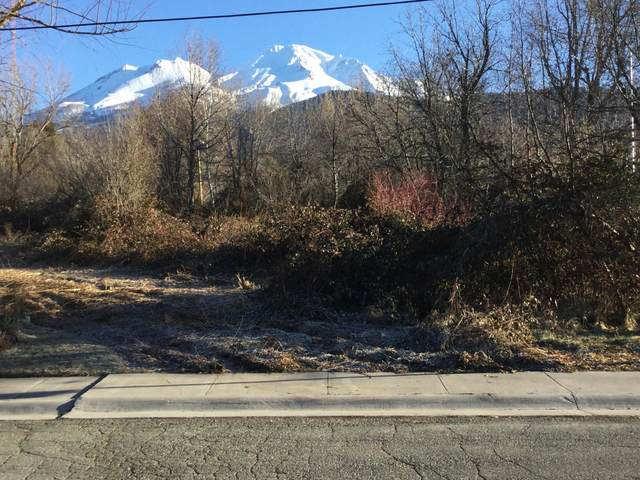 Spruce, Mt. Shasta, CC 96067 (#20-626) :: Wise House Realty