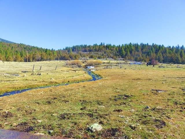 Highway 395, Davis Creek, CA 96108 (#20-765) :: The Doug Juenke Home Selling Team