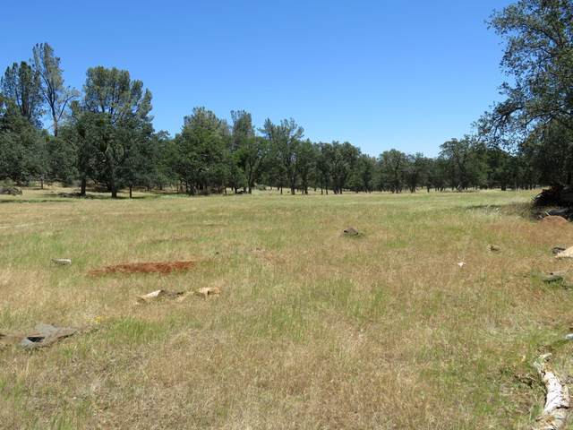 40 acres Campo Dios Road, Shingletown, CA 96088 (#20-768) :: The Doug Juenke Home Selling Team