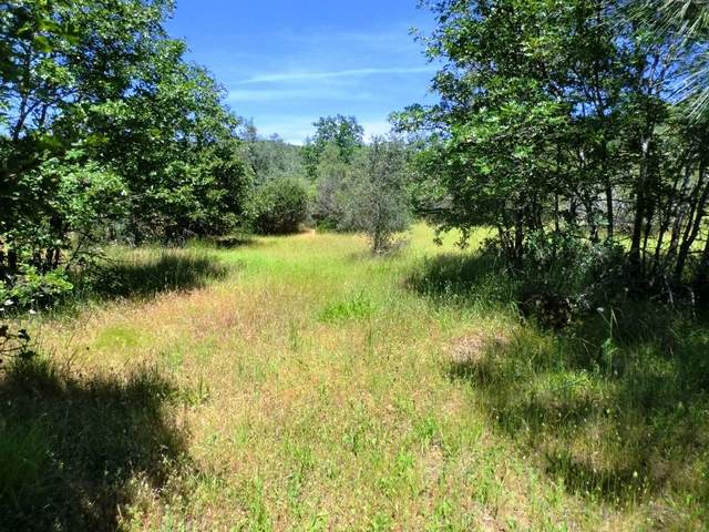 10 acres Patterson Ranch Rd, Round Mountain, CA 96084 (#20-890) :: Waterman Real Estate