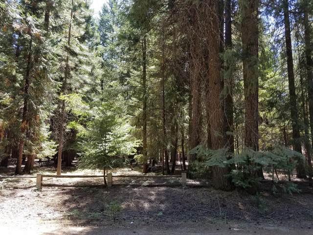 Lot 8 & 9 Redwood Drive, Shingletown, CA 96088 (#20-927) :: Josh Barker Real Estate Advisors