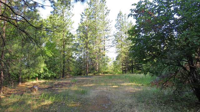 2.6 acres Red Cliff Way, Lakehead, CA 96051 (#20-99) :: Waterman Real Estate