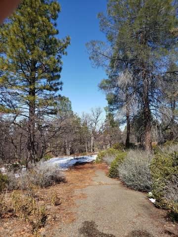 Lot 42 Nez Perce Ct., Fall River Mills, CA 96028 (#21-1205) :: Real Living Real Estate Professionals, Inc.