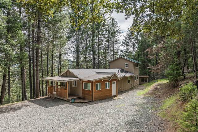 1315 Tucker Hill Rd, Douglas City, CA 96024 (#21-1230) :: Wise House Realty