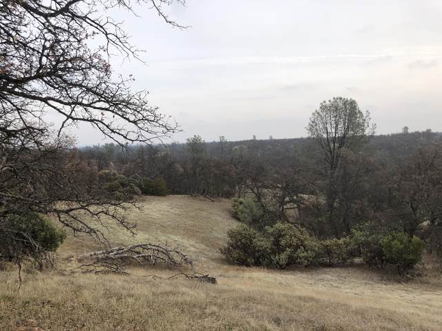 Lot 64 Little Oak Ln, Cottonwood, CA 96022 (#21-130) :: Wise House Realty