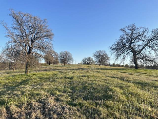 Lot 55 Arlington Park Place, Cottonwood, CA 96022 (#21-1316) :: Wise House Realty