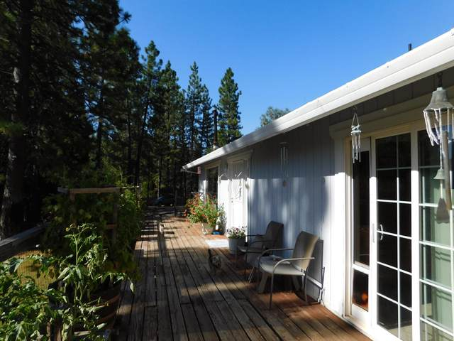 32300 Dickerson Rd, Whitmore, CA 96096 (#21-1420) :: Waterman Real Estate