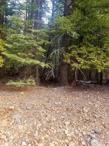 Samuel, Shingletown, CA 96088 (#21-1437) :: Waterman Real Estate