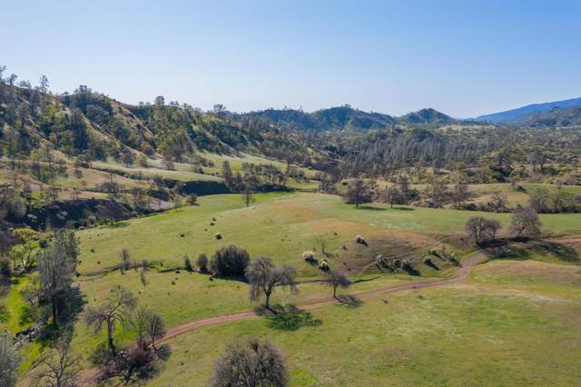 11205 Toomes Camp Rd, Paskenta, CA 96074 (#21-1506) :: Wise House Realty