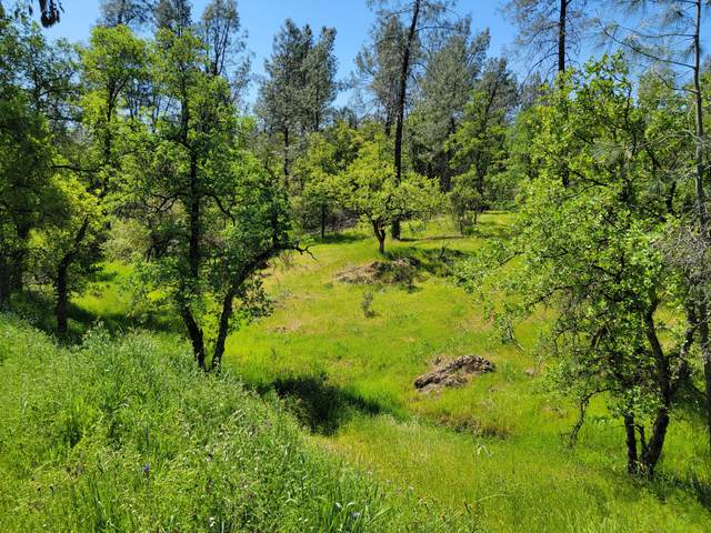 4 Acres Thompson Lane, Redding, CA 96001 (#21-1585) :: Wise House Realty