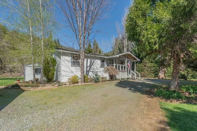 82 Riffle Lane, Douglas City, CA 96024 (#21-1619) :: Waterman Real Estate