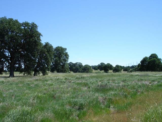 Lot #64 River Downs Way, Cottonwood, CA 96022 (#21-165) :: Wise House Realty