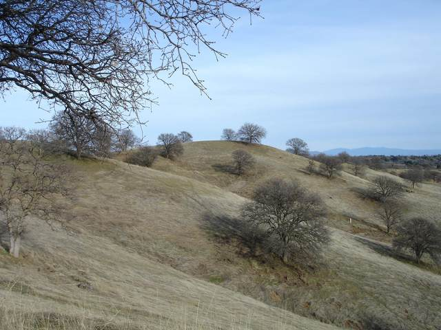 Lot 80 Pimlico Court, Cottonwood, CA 96022 (#21-171) :: Wise House Realty