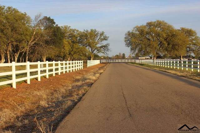 12060 Lazy Ln, Lot 13, Red Bluff, CA 96080 (#21-2004) :: Waterman Real Estate