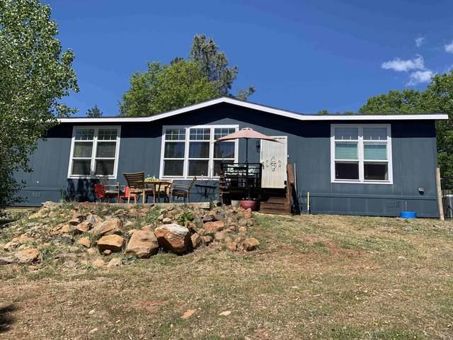 33570 Ponderosa Way, Paynes Creek, CA 96075 (#21-2008) :: Vista Real Estate
