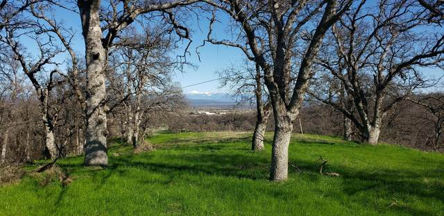 XXXX Kodiak Ct Lot 3, Anderson, CA 96007 (#21-2037) :: Coldwell Banker C&C Properties