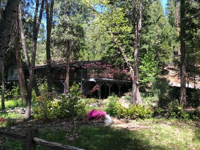 140 Coffee Creek, Trinity Center, CA 96091 (#21-2064) :: Vista Real Estate