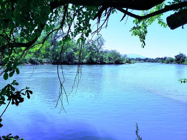 Riverland Dr, Redding, CA 96002 (#21-2069) :: Vista Real Estate
