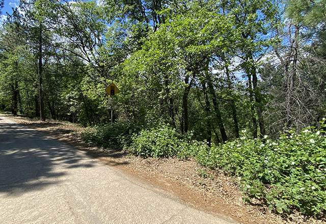 2 Recreation Lots Forest Road, Lakehead, CA 96051 (#21-2107) :: Real Living Real Estate Professionals, Inc.