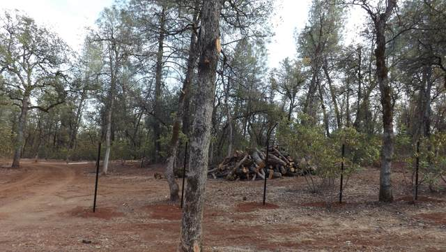 Lot 2 Silver King Road, Redding, CA 96001 (#21-2122) :: Real Living Real Estate Professionals, Inc.