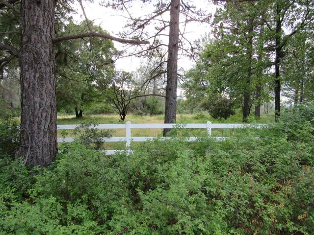 Lot 8 Black Butte Rd., Shingletown, CA 96088 (#21-238) :: Waterman Real Estate