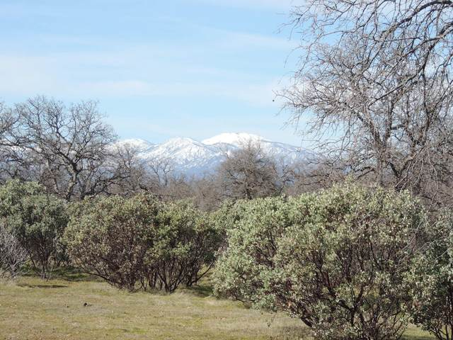 40 AC. Davidson Lane, Anderson, CA 96007 (#21-239) :: Waterman Real Estate