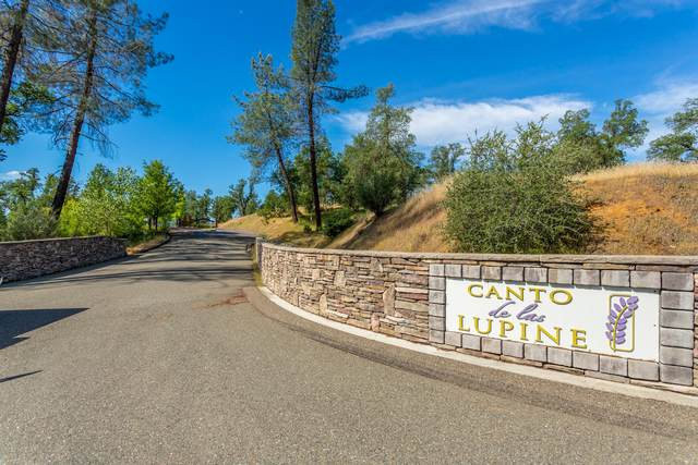 Lot 1 Canto De Las Lupine, Redding, CA 96001 (#21-246) :: Vista Real Estate