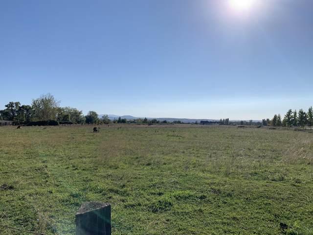Lone Tree, Cottonwood, CA 96022 (#21-2475) :: Coldwell Banker C&C Properties