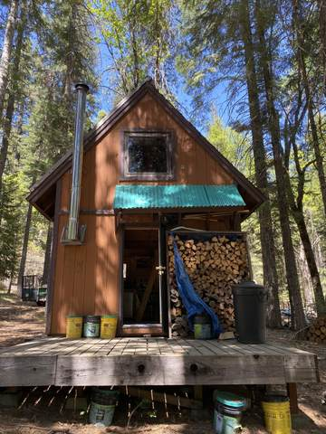 lot 30 Red Fir Unit 3 Blk E, Mccloud, CA 96057 (#21-2611) :: Wise House Realty