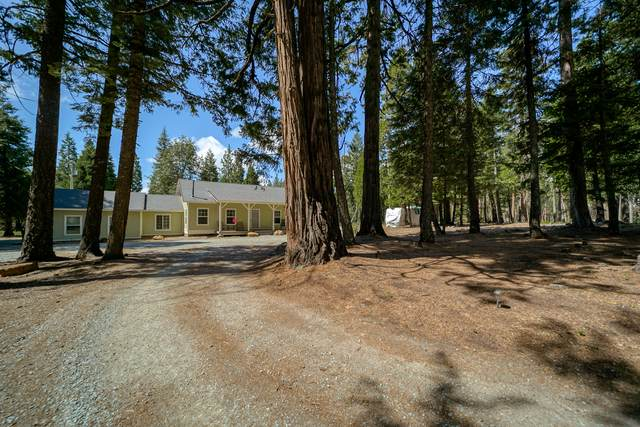 33675 Ca-44, Shingletown, CA 96088 (#21-2721) :: Wise House Realty