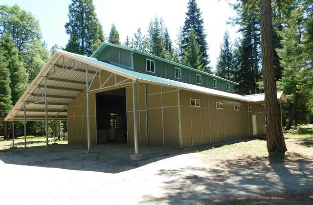 9190 Mountain Meadow Rd, Shingletown, CA 96088 (#21-2736) :: Wise House Realty