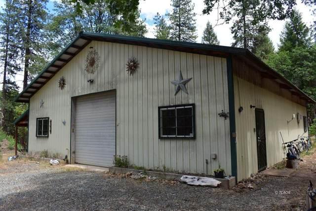 350 Wingert Rd, Hayfork, CA 96041 (#21-2830) :: Coldwell Banker C&C Properties