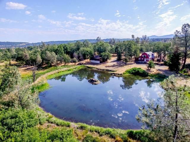 13808 Murphy Ln, Oak Run, CA 96069 (#21-2918) :: Waterman Real Estate