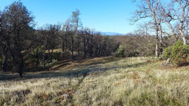 Lot 12 Oak Valley Dr., Cottonwood, CA 96022 (#21-312) :: Waterman Real Estate
