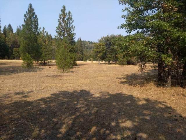 10.14 Acres-Kidder Creek Rd., GREENVIEW, CA 96037 (#21-3210) :: Wise House Realty
