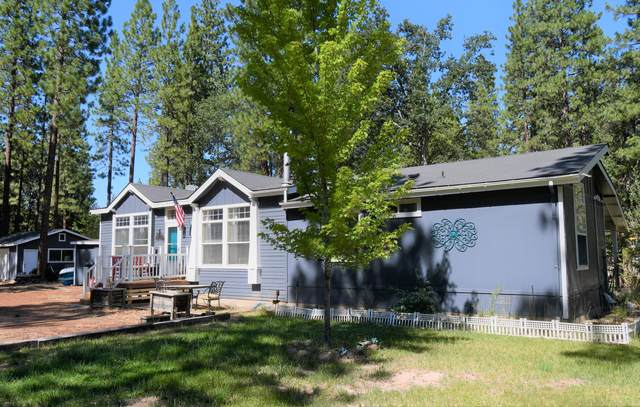 27655 Old Crook Trl, Fall River Mills, CA 96028 (#21-3274) :: Wise House Realty