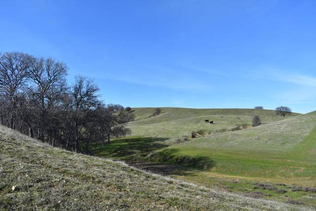 Johnson Rd, Red Bluff, CA 96080 (#21-3321) :: Real Living Real Estate Professionals, Inc.