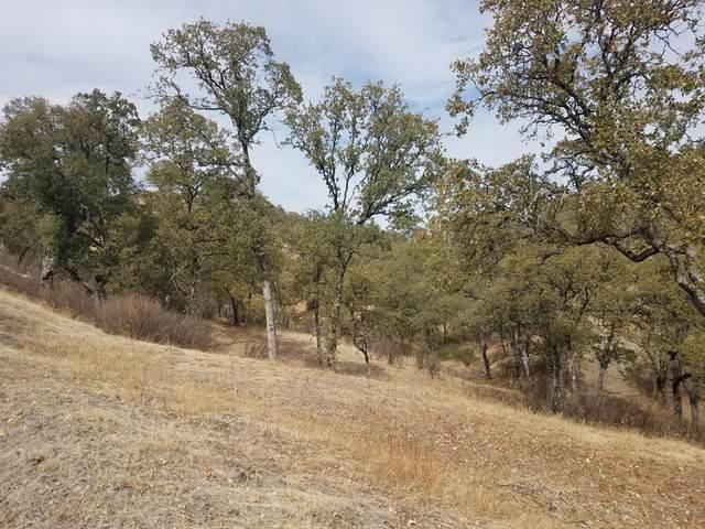 Happy Valley Trail Lot 13, Cottonwood, CA 96002 (#21-338) :: Vista Real Estate