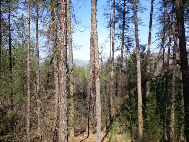 3.87 Acres Raccoon Dr, Lakehead, CA 96051 (#21-350) :: Waterman Real Estate