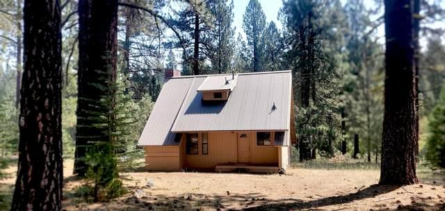 42350 Big Springs Ct, Old Station, CA 96071 (#21-3536) :: Vista Real Estate