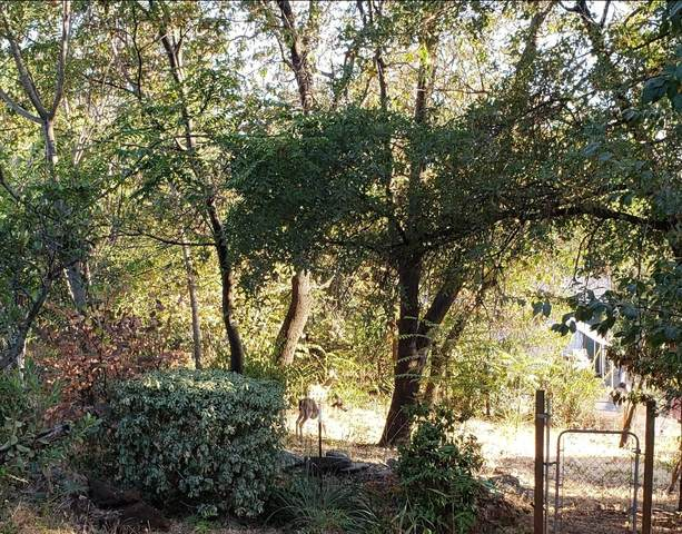 Conchas, Shasta Lake, CA 96019 (#21-3545) :: Waterman Real Estate