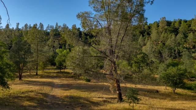 Ash Creek, Shingletown, CA 96007 (#21-3578) :: Coldwell Banker C&C Properties