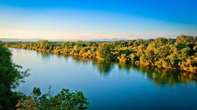 22786 River View Dr, Lake California, CA 96022 (#21-3607) :: Real Living Real Estate Professionals, Inc.